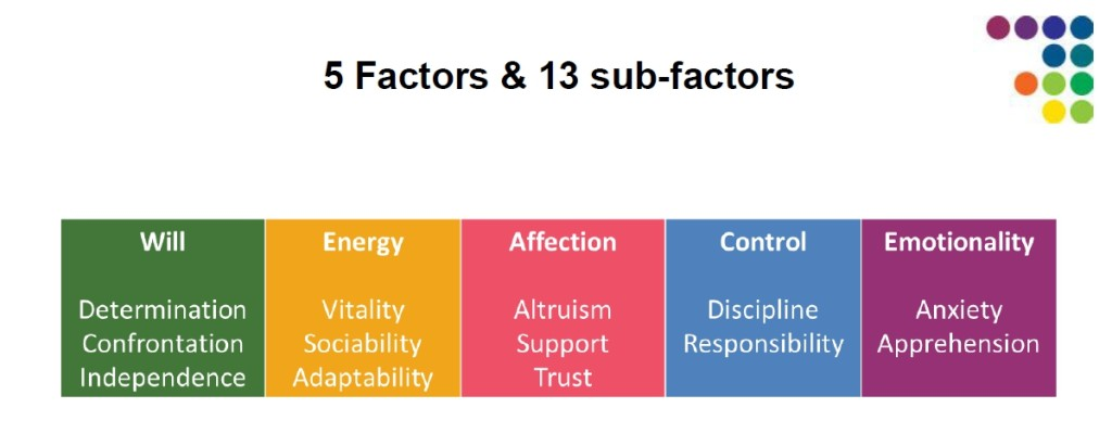 facet5-13-factors